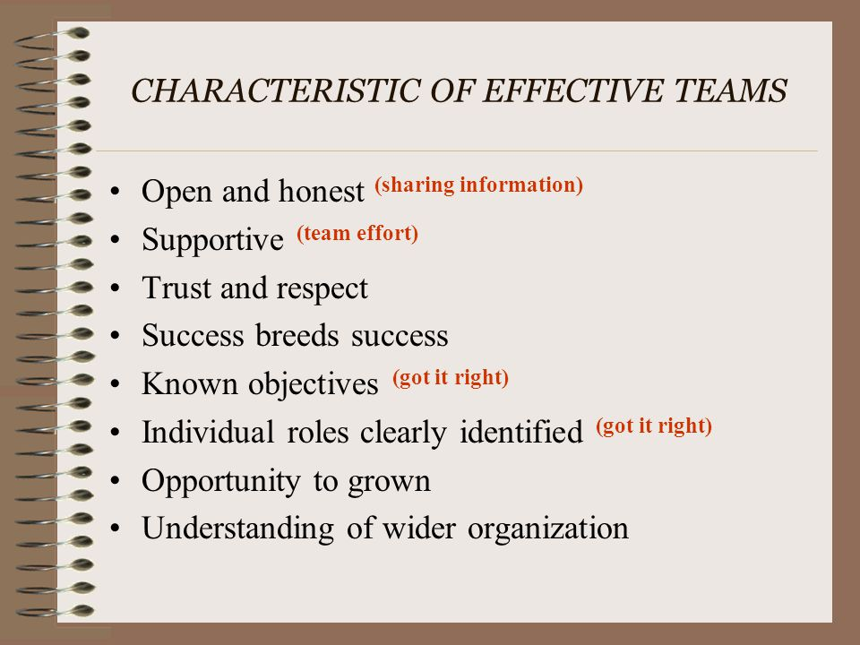 CHARACTERISTIC OF EFFECTIVE TEAMS