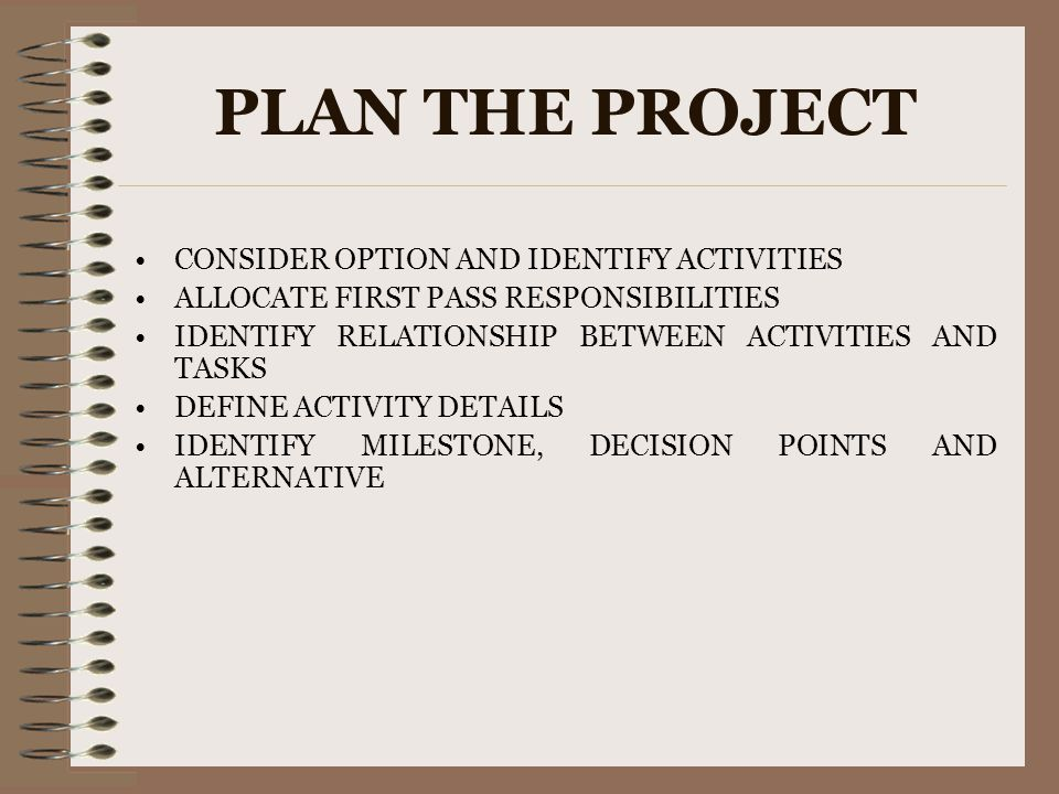 PLAN THE PROJECT CONSIDER OPTION AND IDENTIFY ACTIVITIES