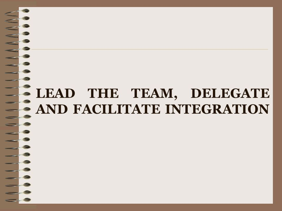 LEAD THE TEAM, DELEGATE AND FACILITATE INTEGRATION