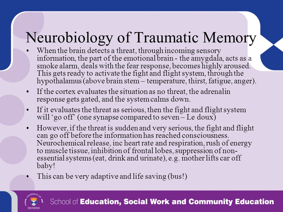 Neurobiology of Traumatic Memory