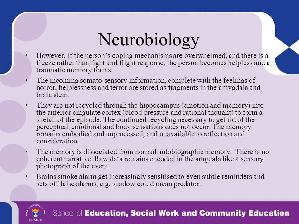 Neurobiology
