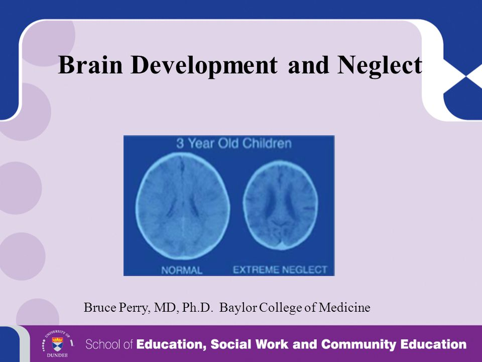Brain Development and Neglect
