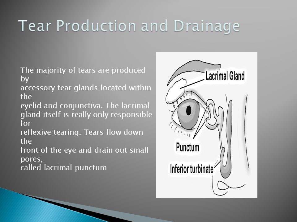 Tear Production and Drainage