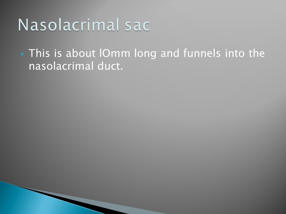 Nasolacrimal sac This is about lOmm long and funnels into the nasolacrimal duct.