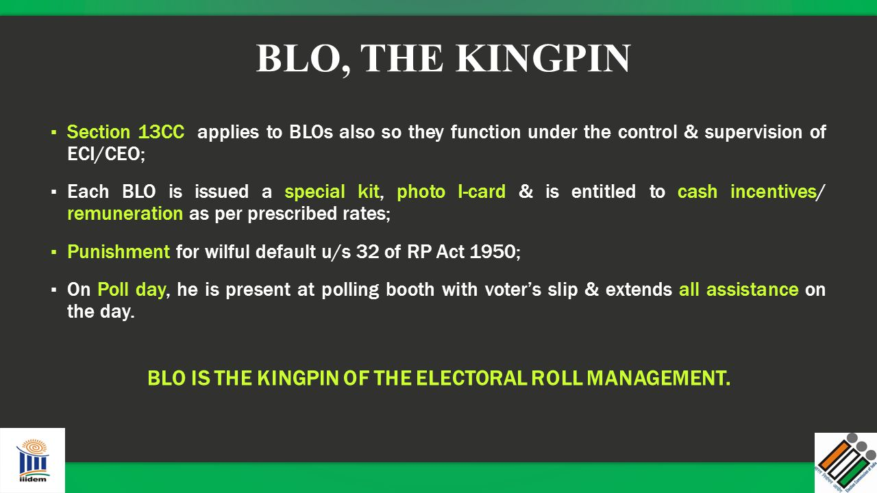 BLO IS THE KINGPIN OF THE ELECTORAL ROLL MANAGEMENT.