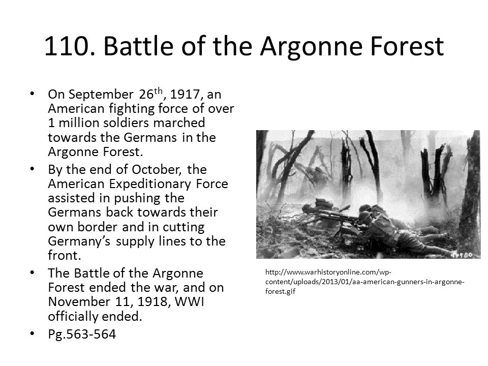 110. Battle of the Argonne Forest