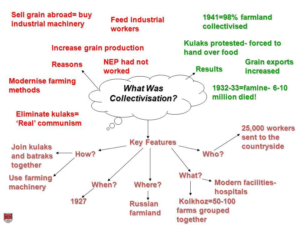 What Was Collectivisation