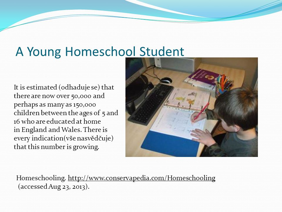 A Young Homeschool Student