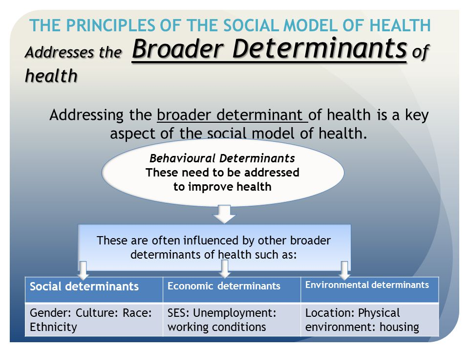 THE PRINCIPLES OF THE SOCIAL MODEL OF HEALTH