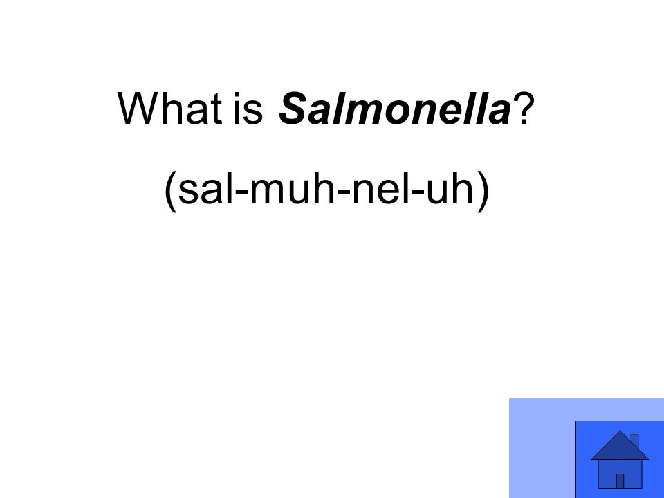 What is Salmonella (sal-muh-nel-uh)