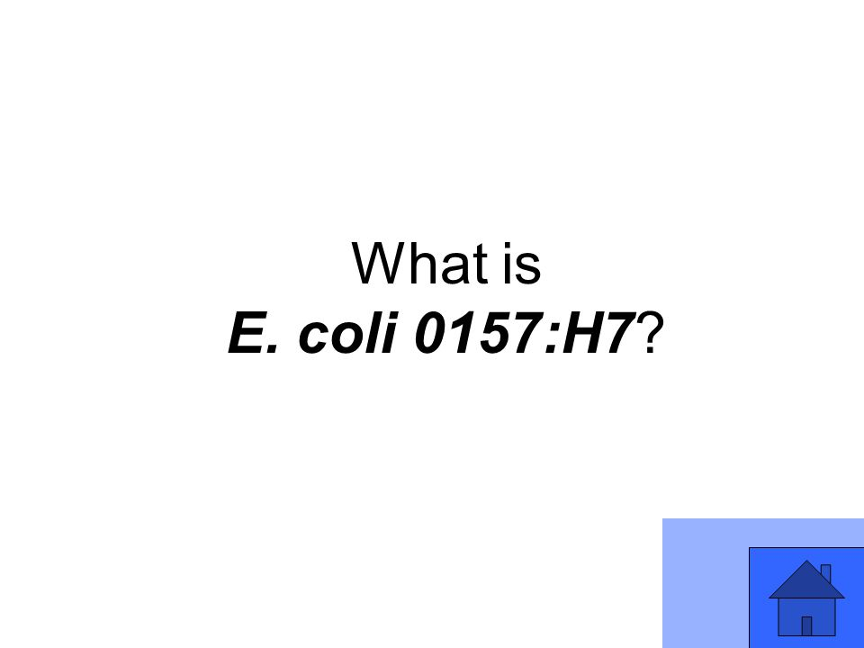 What is E. coli 0157:H7