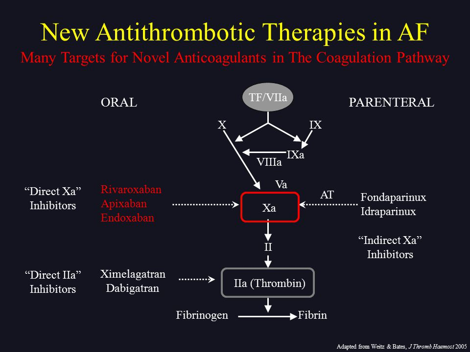 New Antithrombotic Therapies in AF