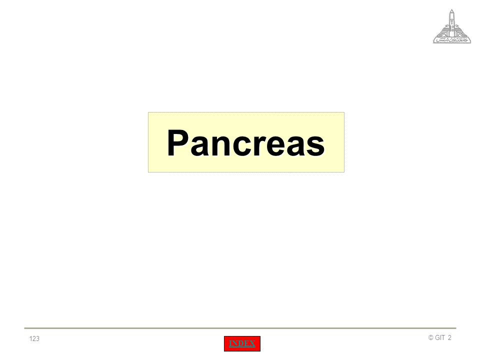Pancreas © GIT 2 INDEX
