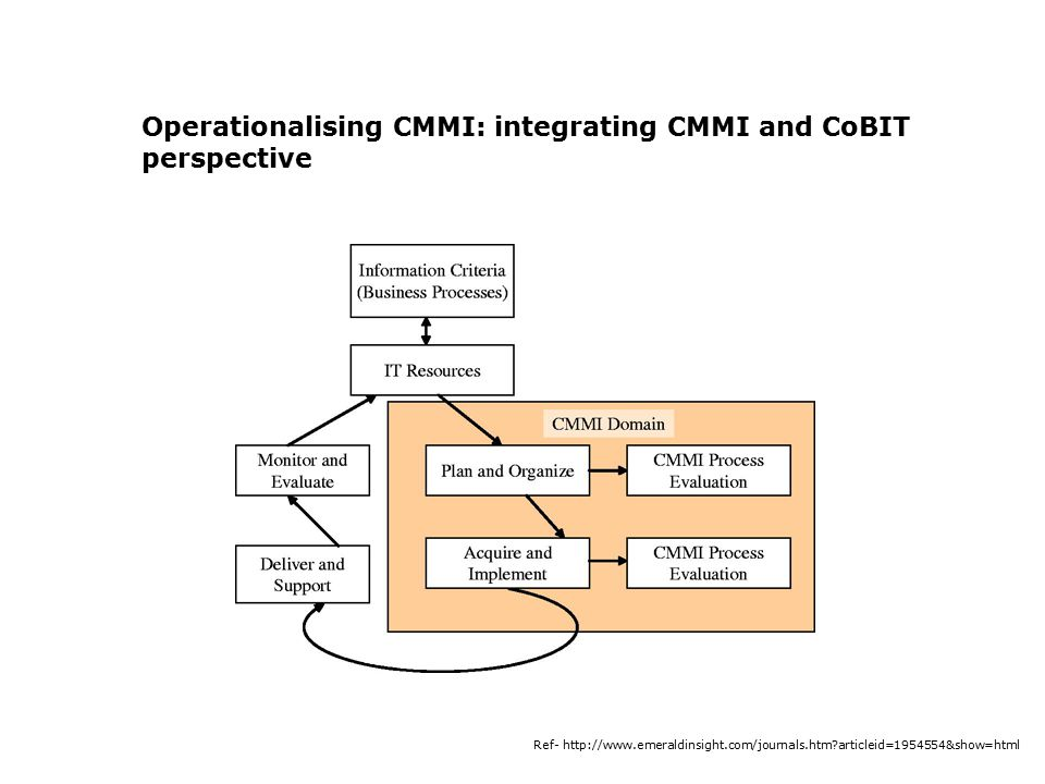 Operationalising CMMI: integrating CMMI and CoBIT perspective