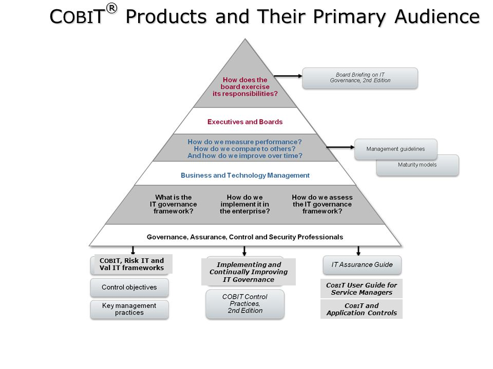 COBIT® Products and Their Primary Audience