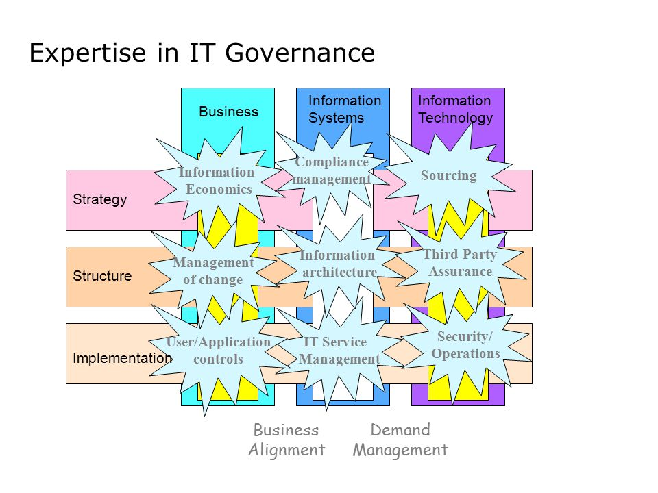 Expertise in IT Governance