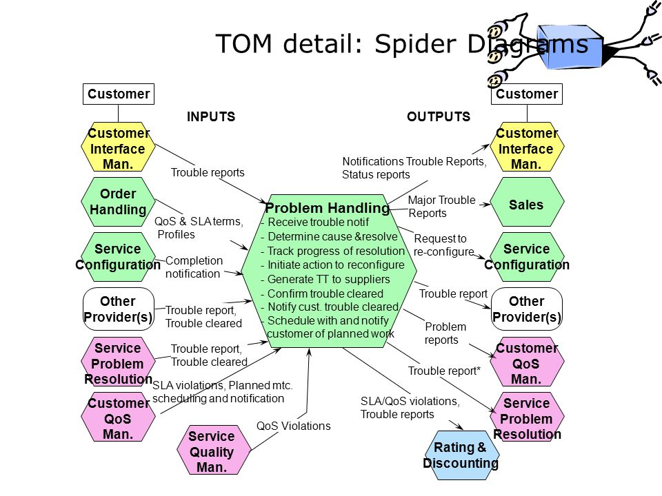 TOM detail: Spider Diagrams
