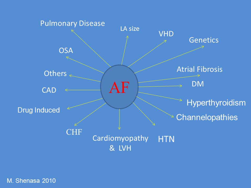 AF HTN Pulmonary Disease VHD Genetics OSA Atrial Fibrosis Others DM