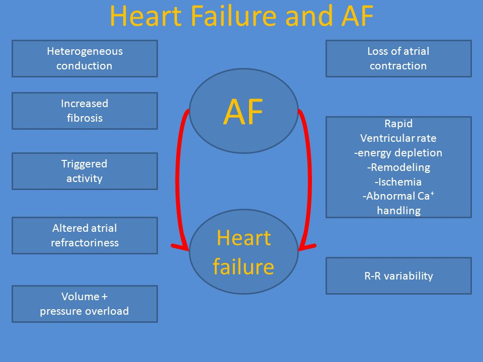 AF Heart Failure and AF Heart failure Heterogeneous conduction