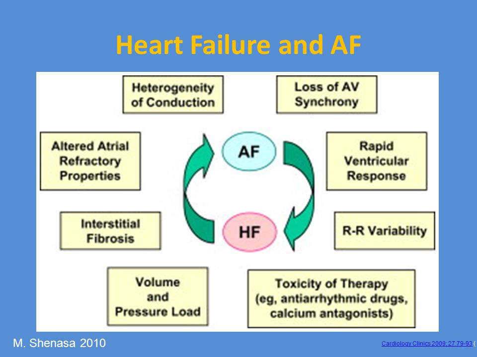 Heart Failure and AF M. Shenasa 2010