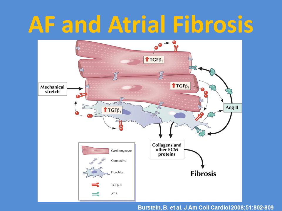 AF and Atrial Fibrosis Burstein, B. et al. J Am Coll Cardiol 2008;51:802-809