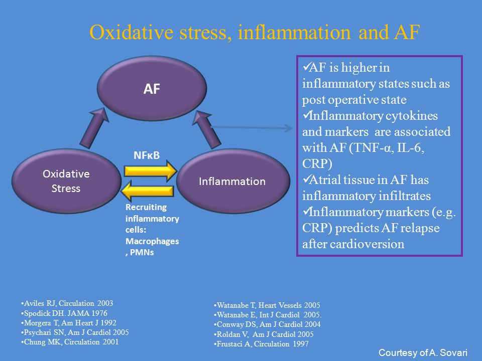 Oxidative stress, inflammation and AF