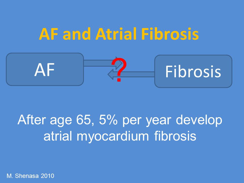 After age 65, 5% per year develop atrial myocardium fibrosis