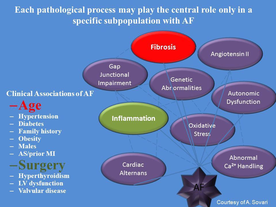 Each pathological process may play the central role only in a specific subpopulation with AF