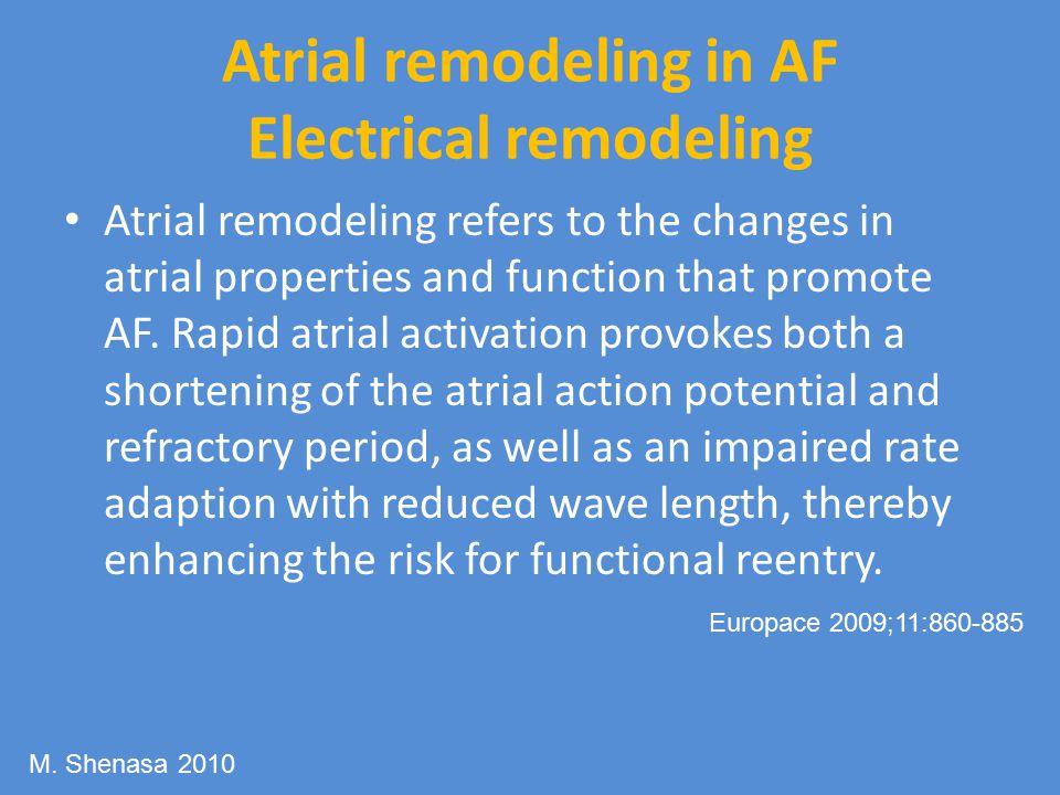 Atrial remodeling in AF Electrical remodeling