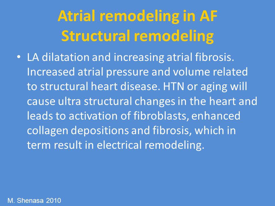 Atrial remodeling in AF Structural remodeling