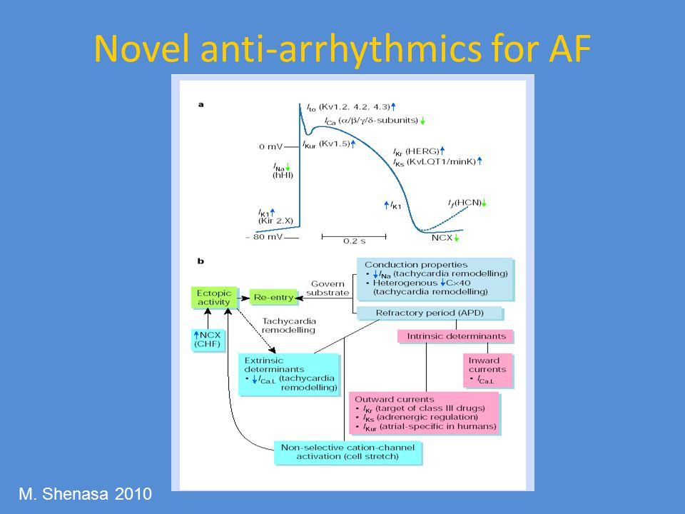 Novel anti-arrhythmics for AF