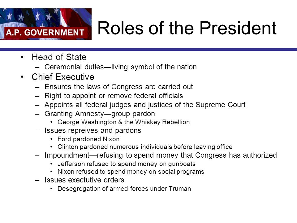 Roles of the President Head of State Chief Executive