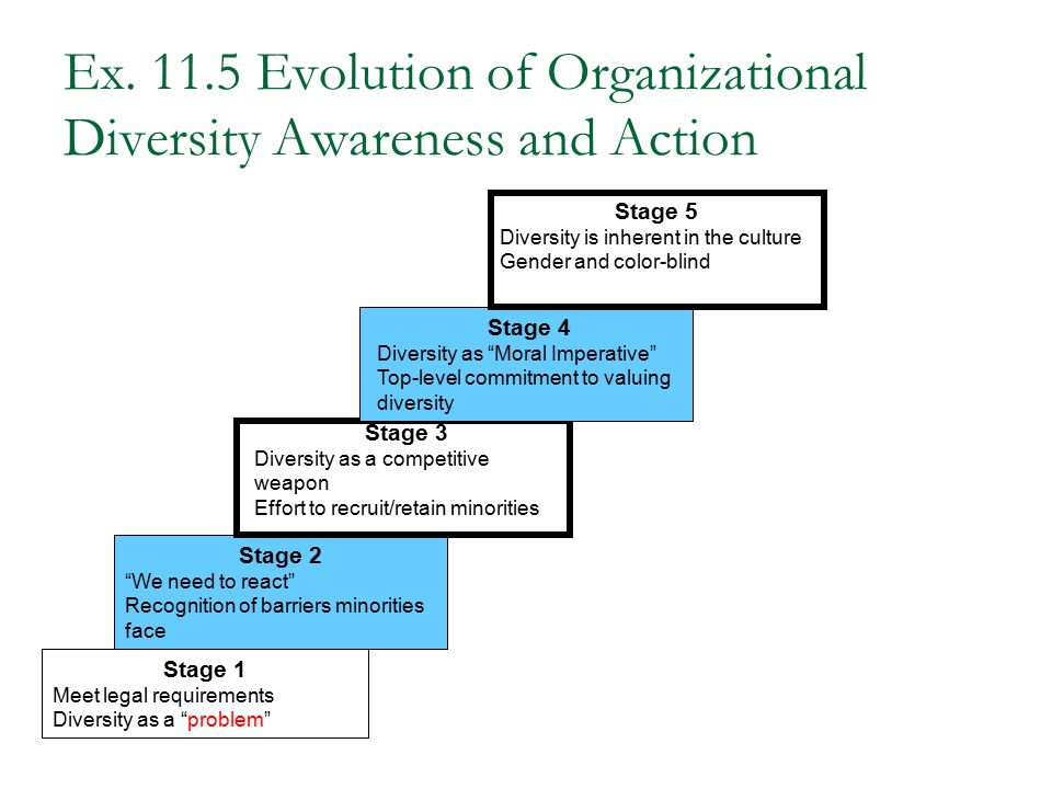 Ex. 11.5 Evolution of Organizational Diversity Awareness and Action