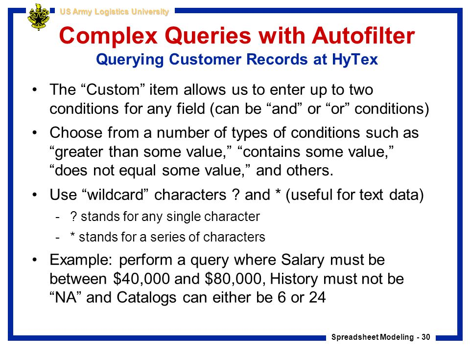Complex Queries with Autofilter Querying Customer Records at HyTex