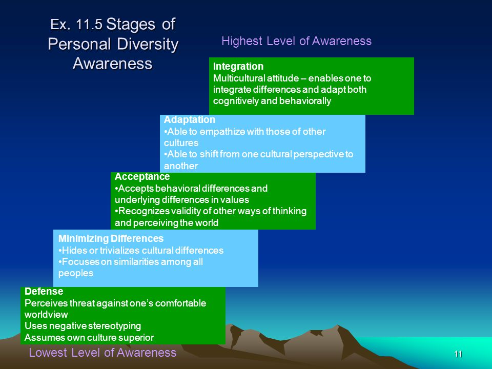 Ex. 11.5 Stages of Personal Diversity Awareness