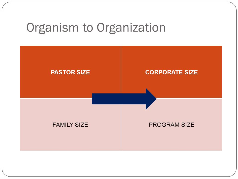 Organism to Organization