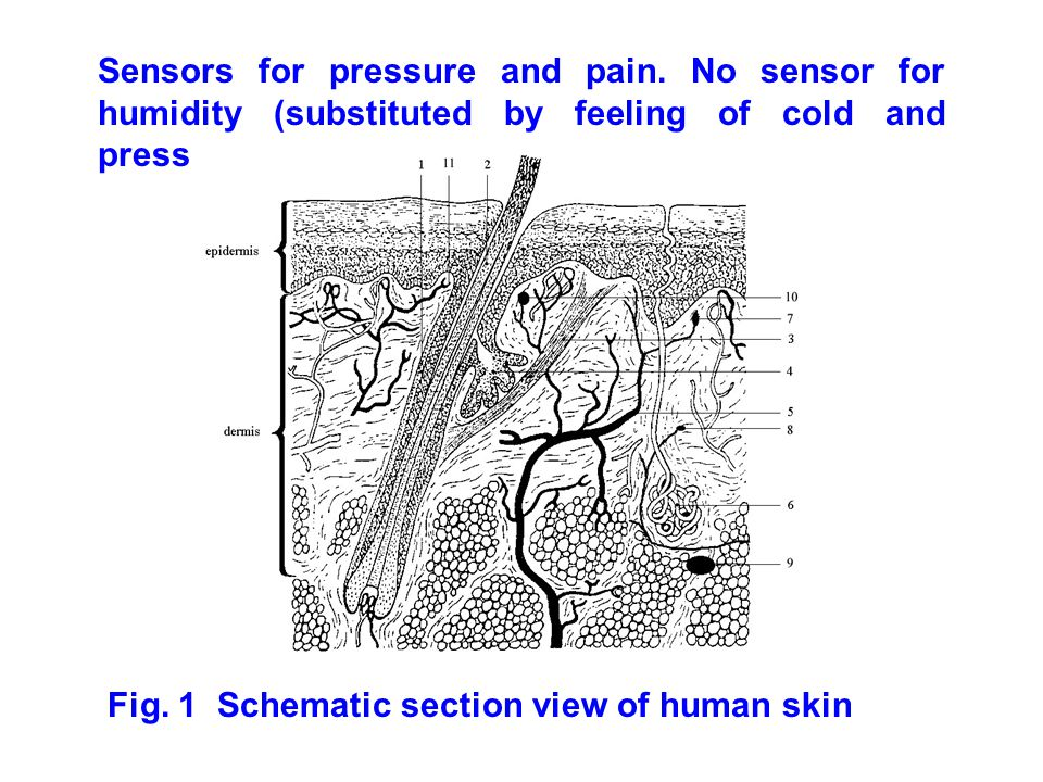 Sensors for pressure and pain