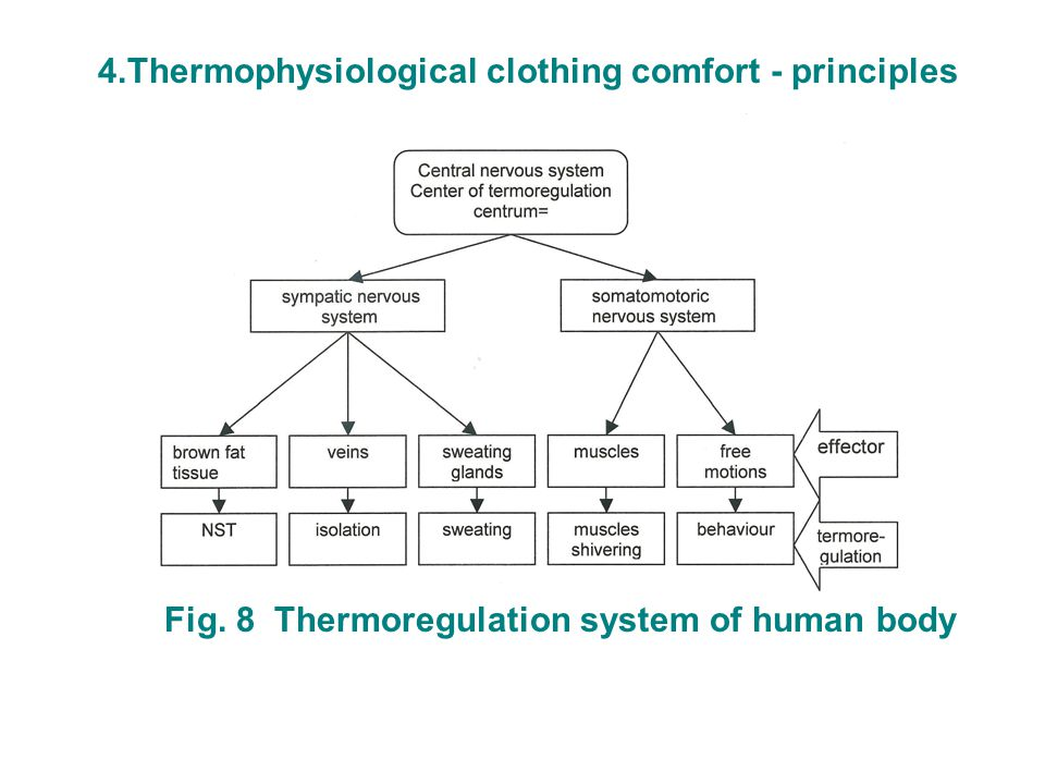 4.Thermophysiological clothing comfort - principles