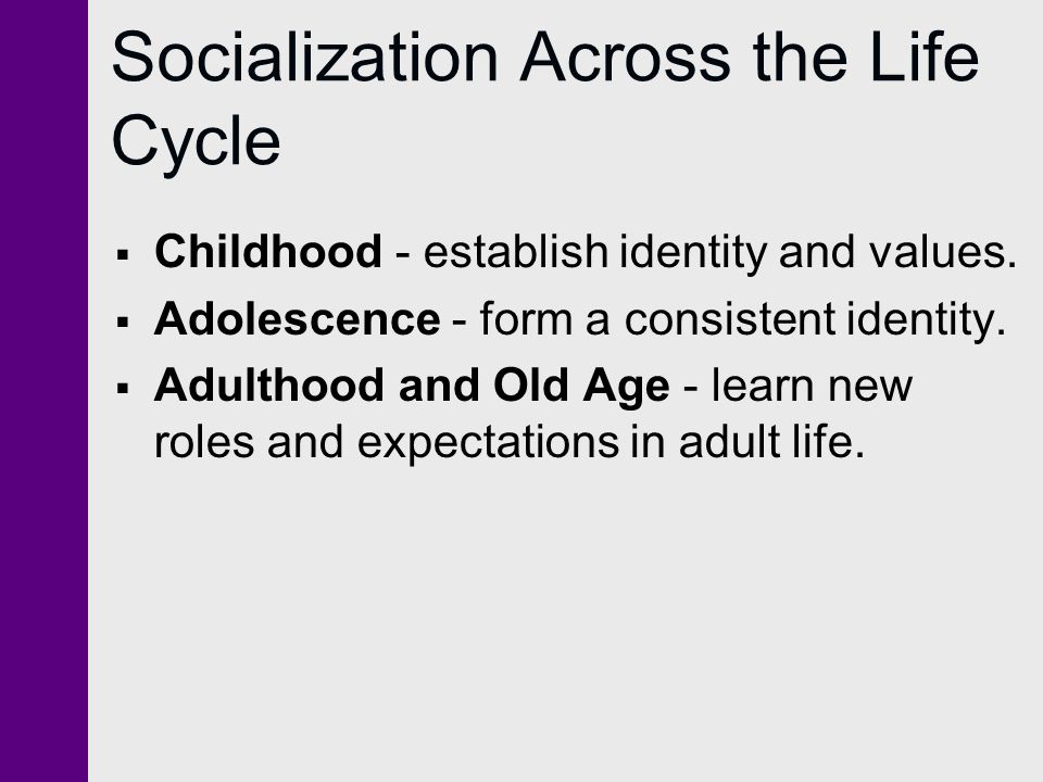 Socialization Across the Life Cycle