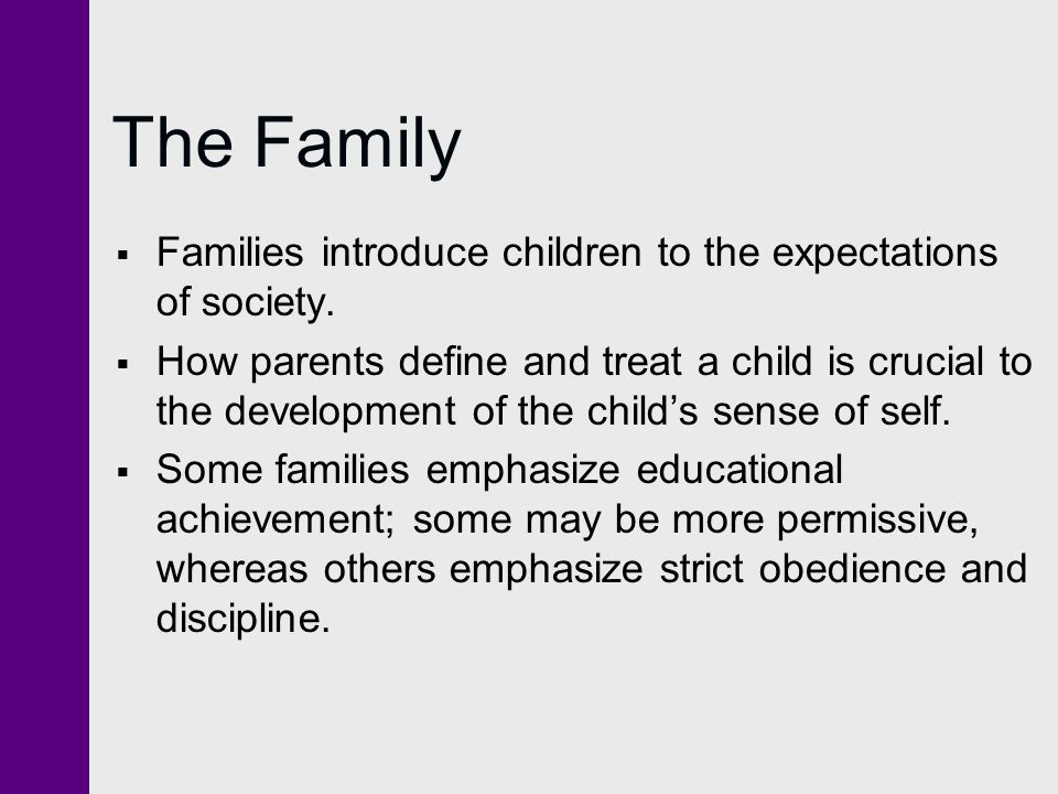 The Family Families introduce children to the expectations of society.