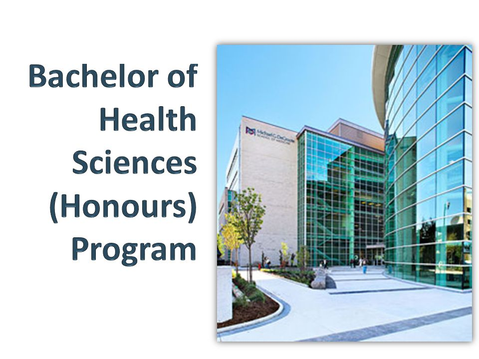 Bachelor of Health Sciences (Honours) Program
