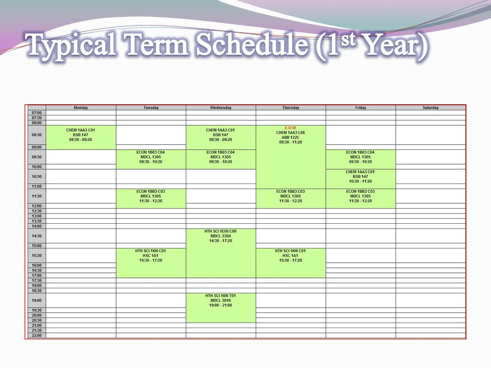 Typical Term Schedule (1st Year)