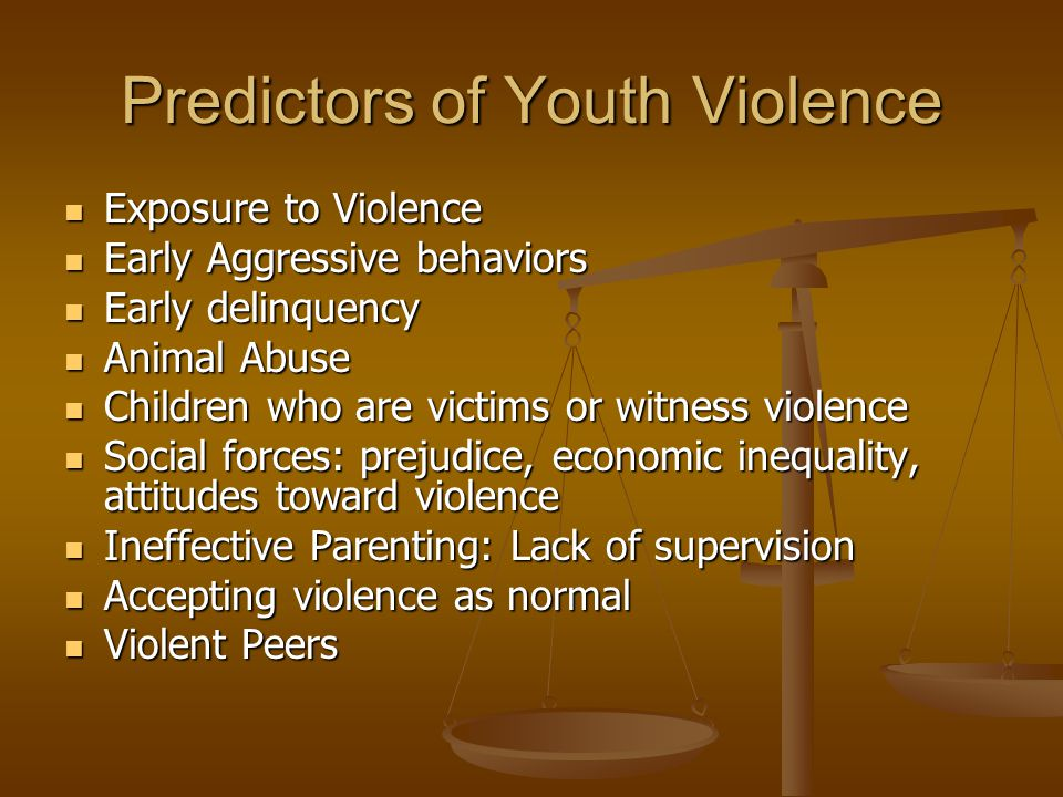 Predictors of Youth Violence