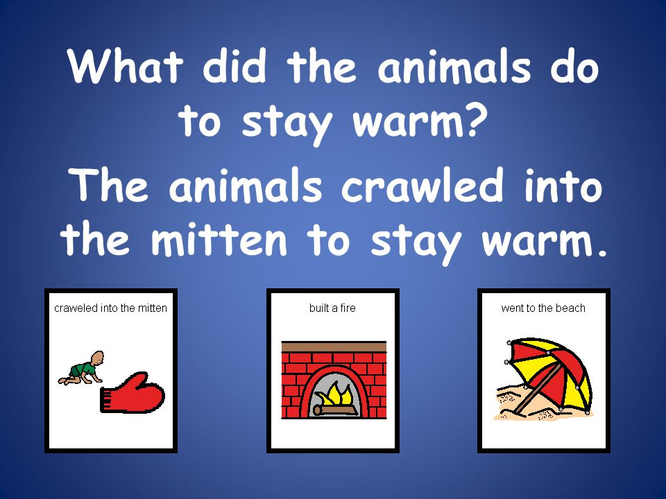 What did the animals do to stay warm