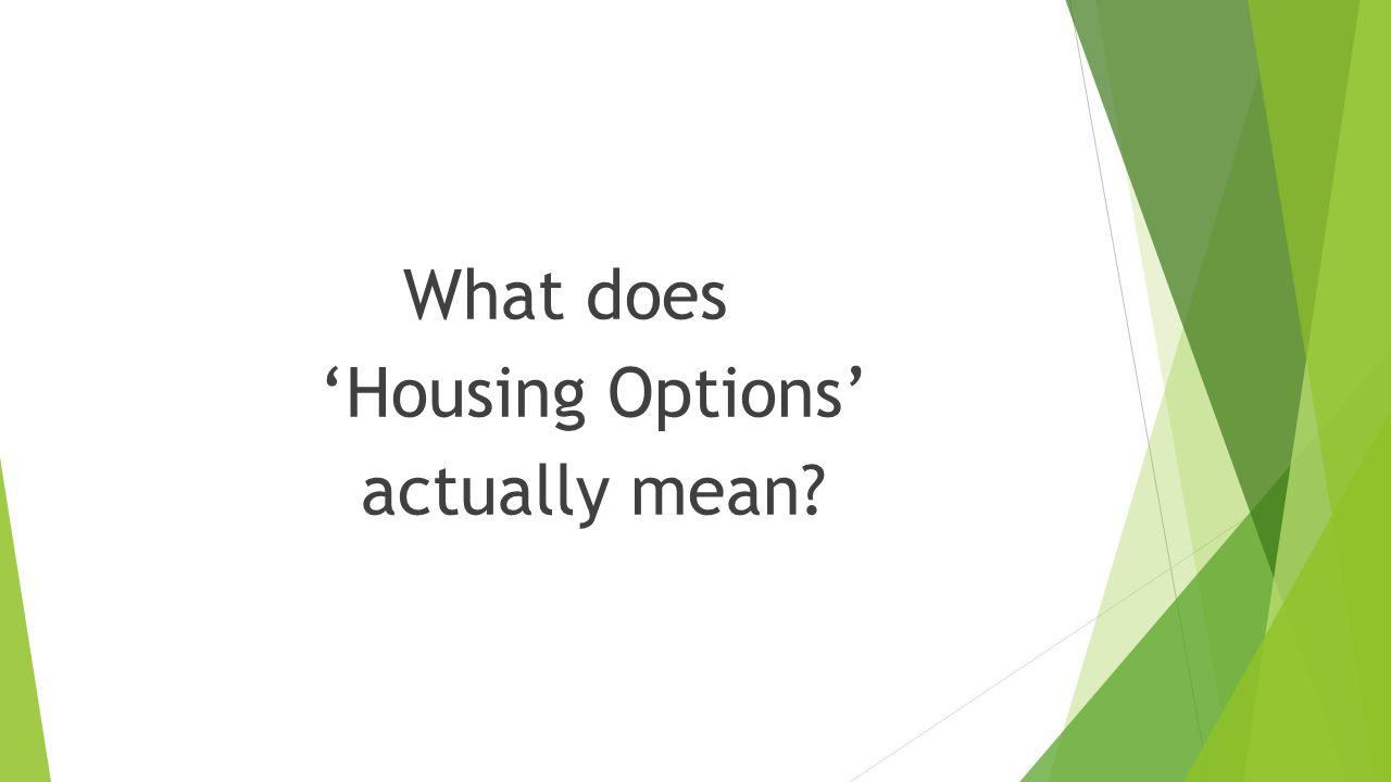What does 'Housing Options' actually mean