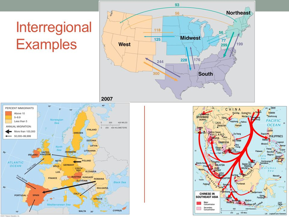 Examples of interregional and intraregional migration