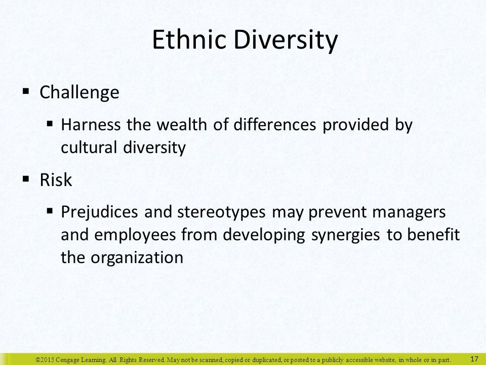 Ethnic Diversity Challenge Risk
