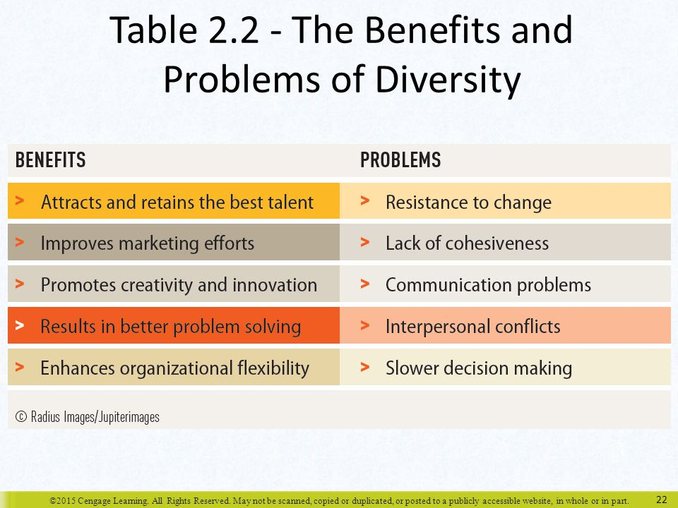 Table 2.2 - The Benefits and Problems of Diversity