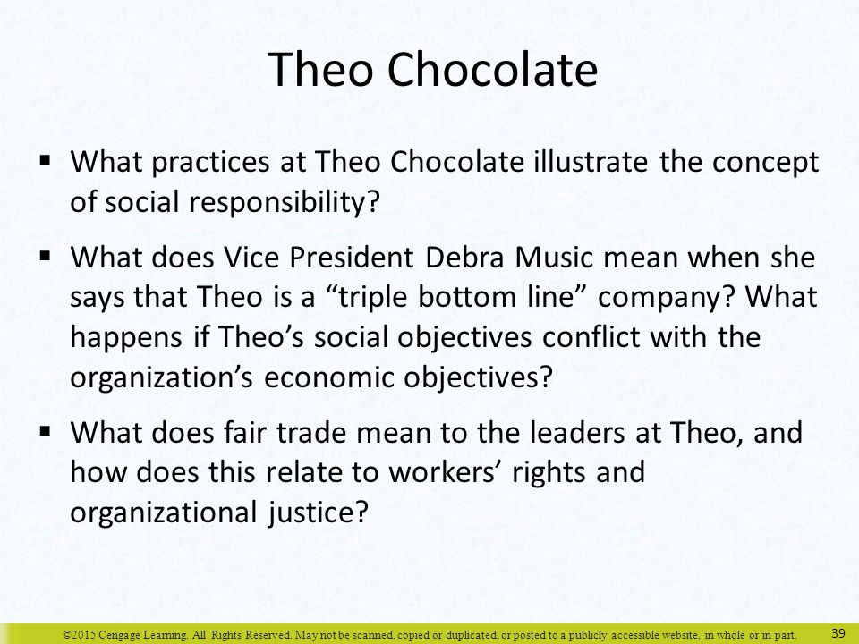 Theo Chocolate What practices at Theo Chocolate illustrate the concept of social responsibility