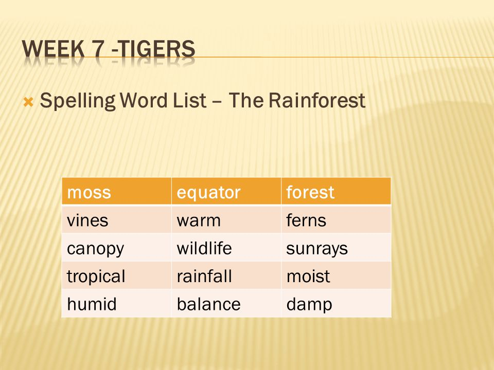 Week 7 -Tigers Spelling Word List – The Rainforest moss equator forest